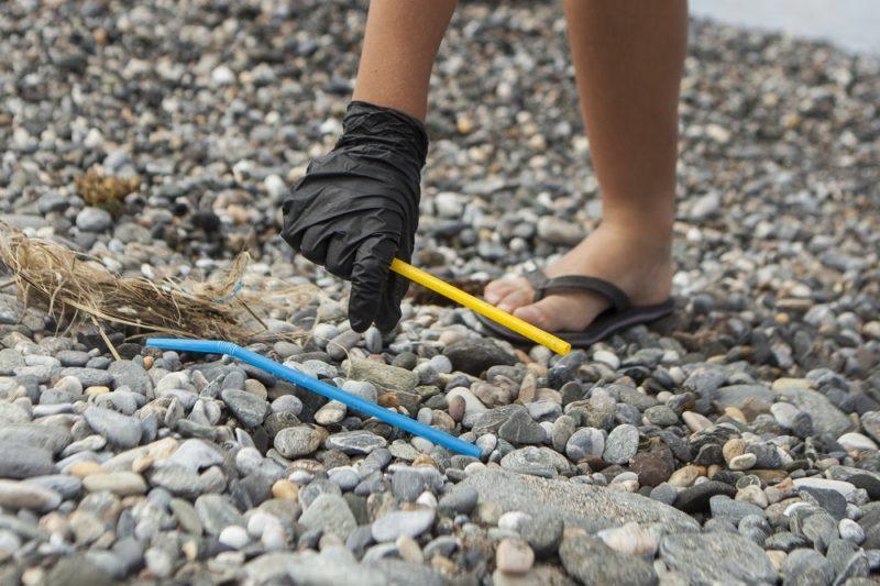 Sensibilización y conocimiento científico para preservar mares y costas